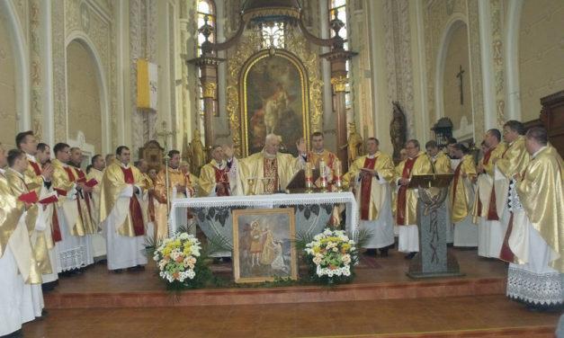 L'ouverture de l'Année de Saint Martin dans le Diocèse de Mukachevo