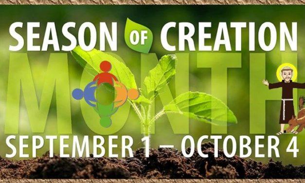 A KEK és a CCEE közös imára buzdít a teremtett világ védelmében
