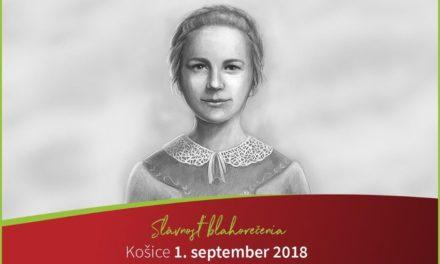 Блаженна Анна Колесарова, «словацька Марія Ґоретті»