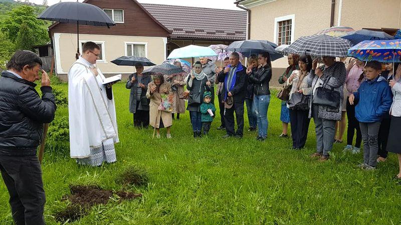 Їдеш до Папи? Посади дерево!
